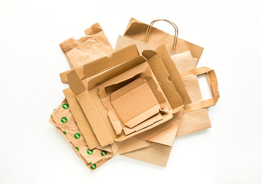 emballage biodegradable-carton