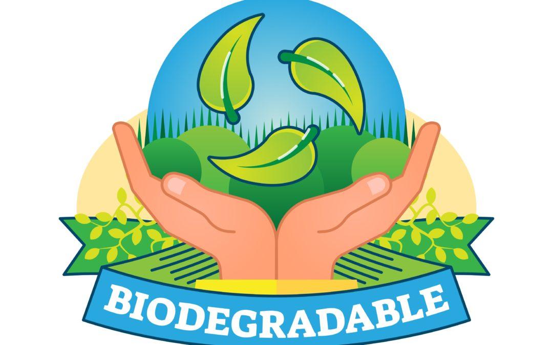 L'emballage biodégradable : nouvel atout logistique ?
